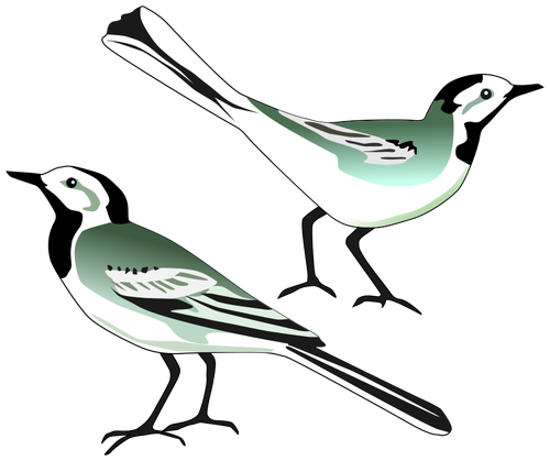 Two Birds PNG Black And White - 149089