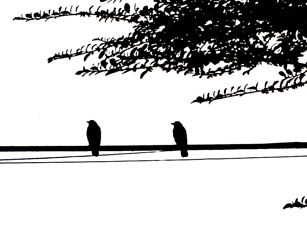 Two Birds on a Wire by Solveig1900 PlusPng.com  - Two Birds PNG Black And White