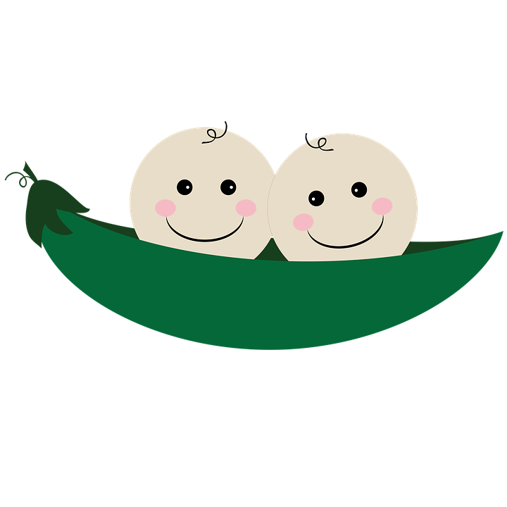 Twins, Two Peas In A Pod, Pea, Pod, Pea Pod, Baby - Two Peas In A Pod PNG