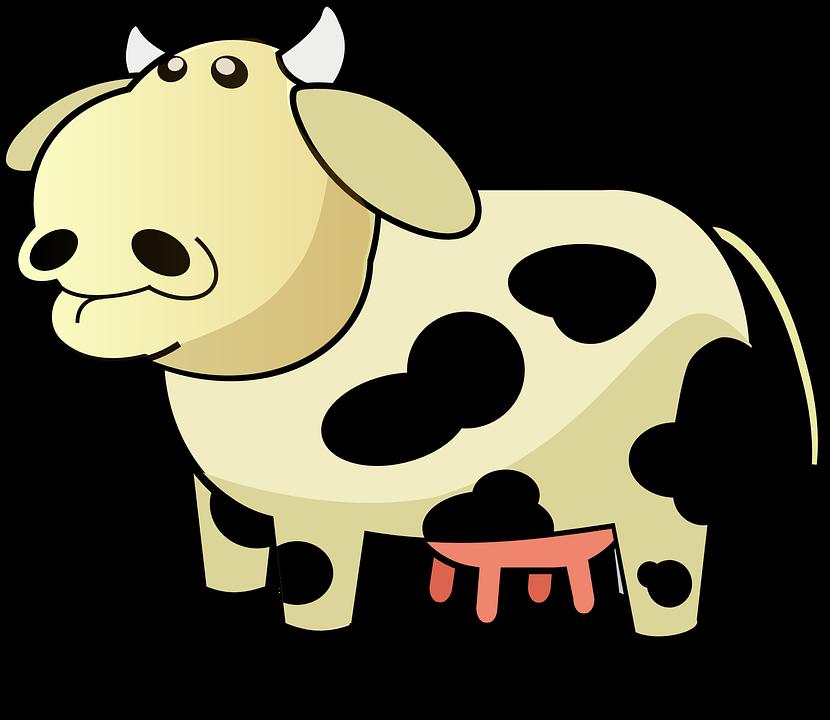 Cow, Cattle, Livestock, Udder, Dairy, Farm, Animal - Udder PNG