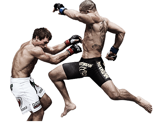 Fight PNG Transparent Picture - Ufc PNG