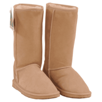 Ugg Boots PNG - 81108