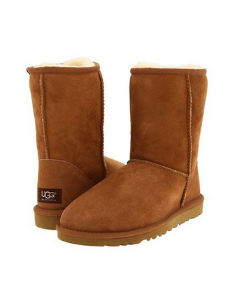 Ugg Boots PNG - 81107