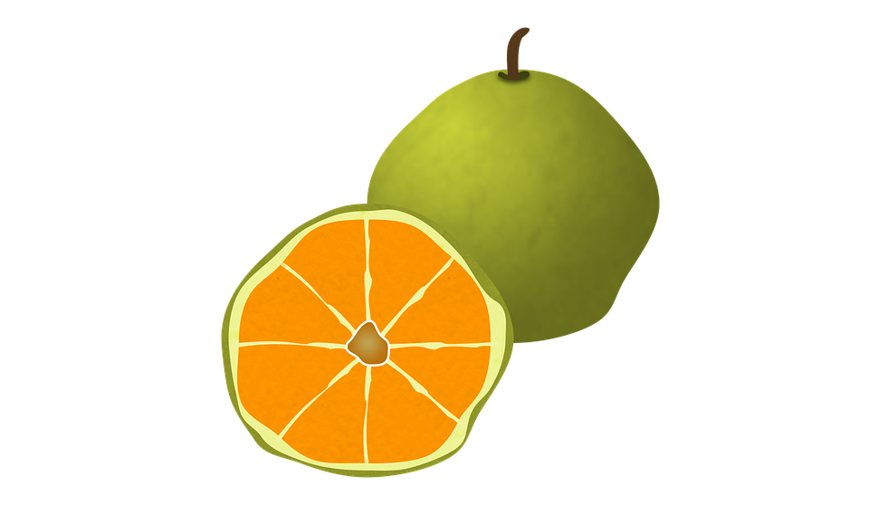 ugli fruit fruit citrus organic juicy orange - Ugli Fruit PNG