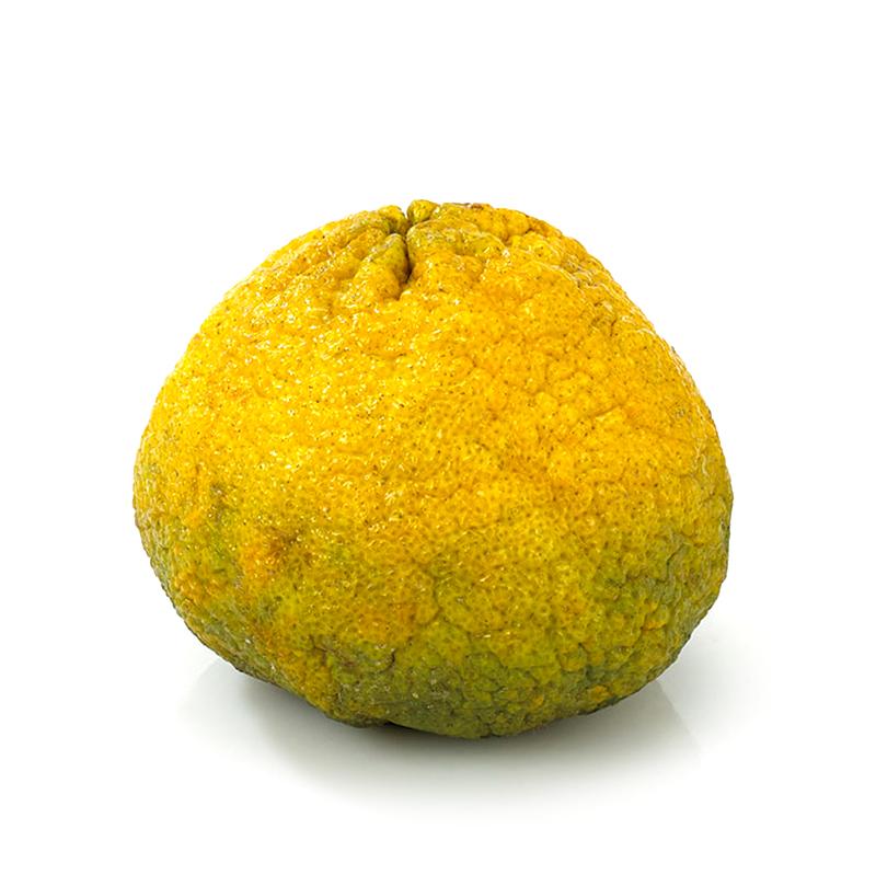 Vega-Uglyfruit - Ugli Fruit PNG