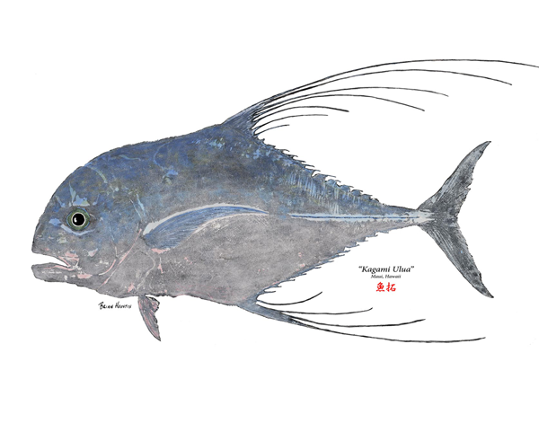 Ulua fish png transparent ulua fish png images pluspng for Fly fishing maui
