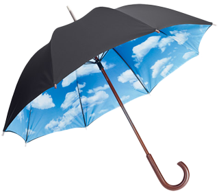 login - Umbrella PNG