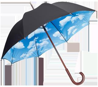 login - Umbrella PNG