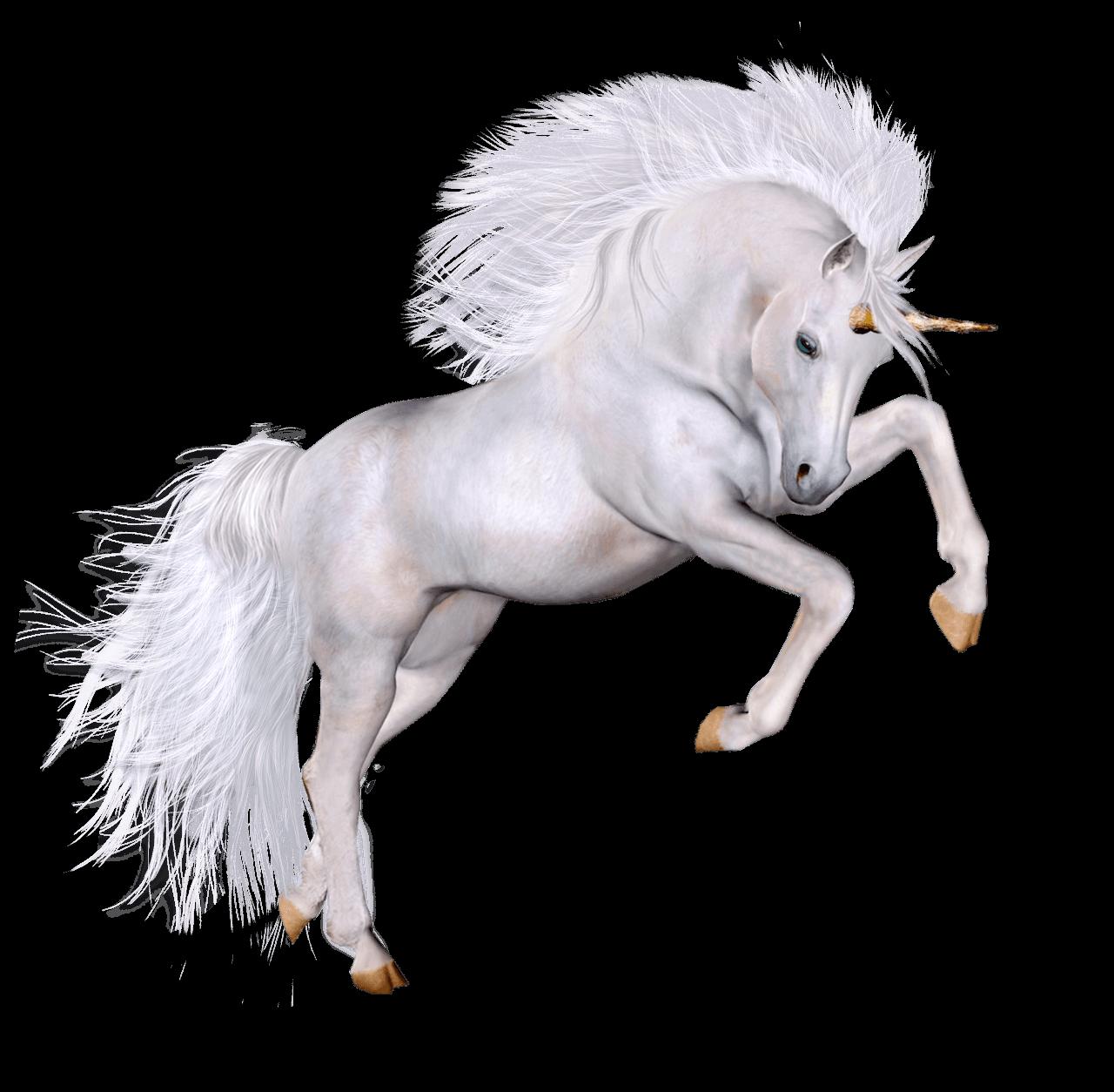 Unicorn PNG - 20449