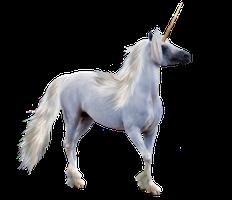 Unicorn PNG - 20457