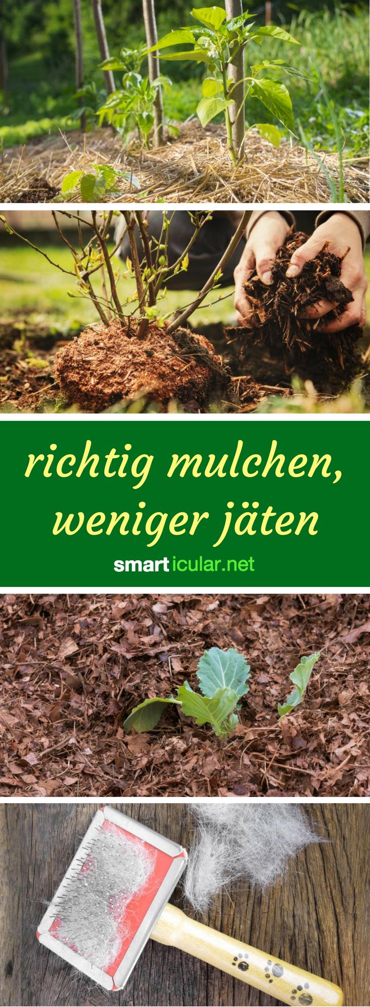 Die richtige Mulchschicht im Biogarten spart Wasser und Dünger, unterdrückt  Unkräuter und schafft ein ideales - Unkraut Jaten PNG