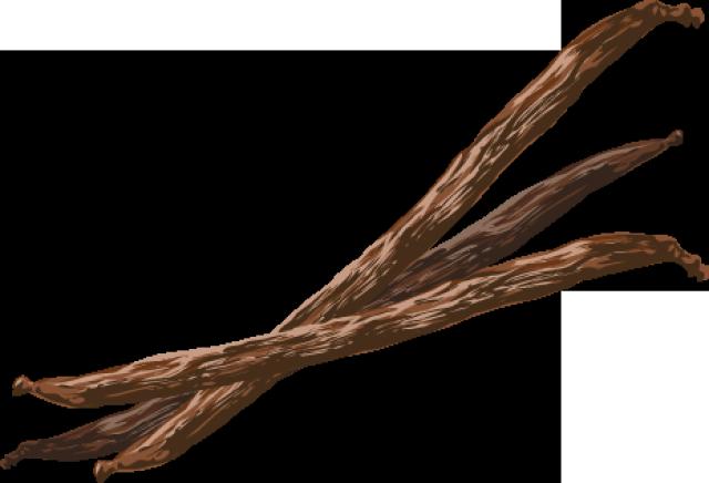 Vanilla Bean PNG File - Vanilla PNG