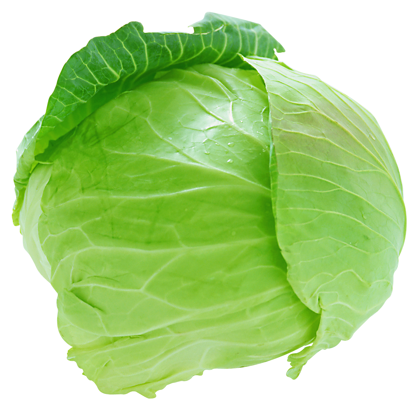 Vegetable PNG - 20360