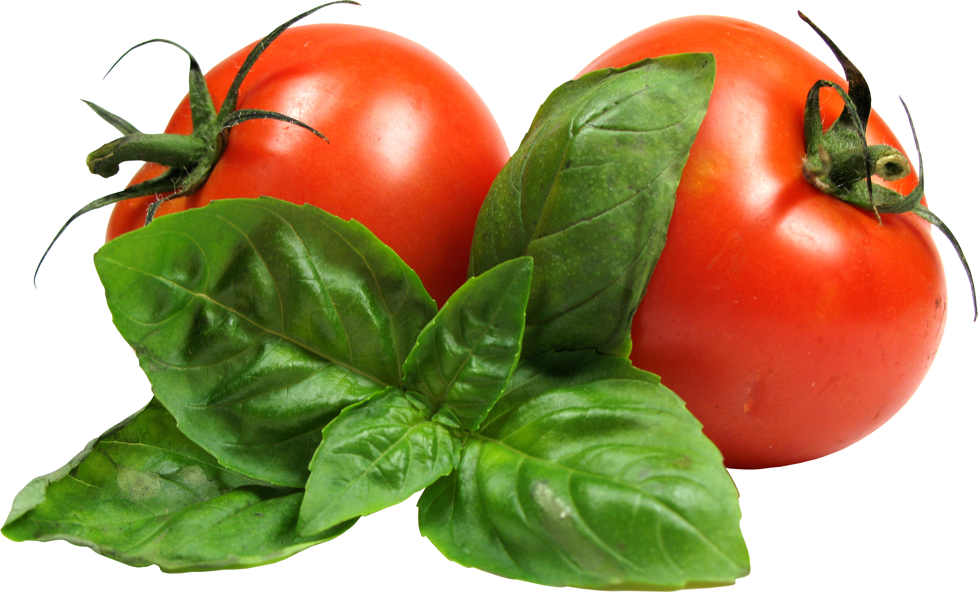Tomato PNG - Vegetable PNG HD