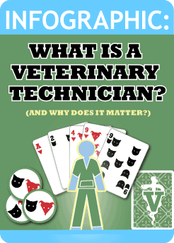 veterinary assistant infographic - Vet Assistant PNG