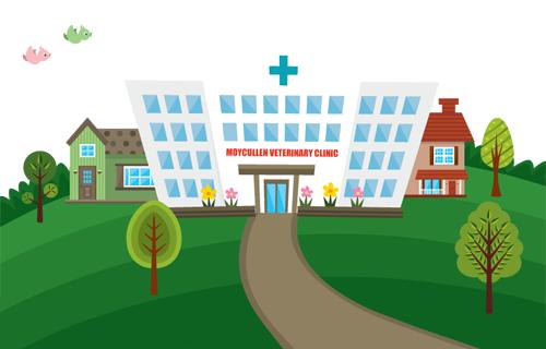 Vet Clinic PNG - 56353