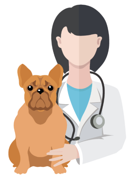 Kings Highway Animal Clinic in San Marcos has a monthly vaccine clinic.  Kyle Animal Hospital has a twice-monthly clinic - Vet Clinic PNG
