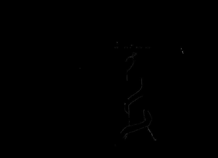 Vet PNG Black And White - 54818