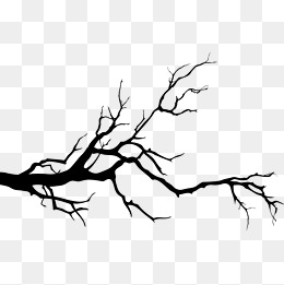 ink vine branches, Ink, Branches, Vine Branches PNG Image and Clipart - Vine And Branches PNG