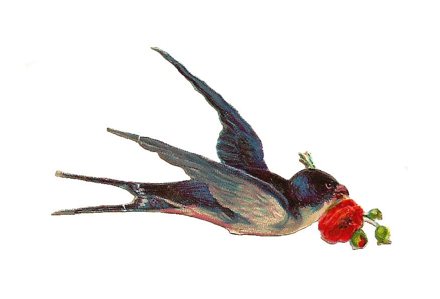 Vintage Love Birds PNG - 156532