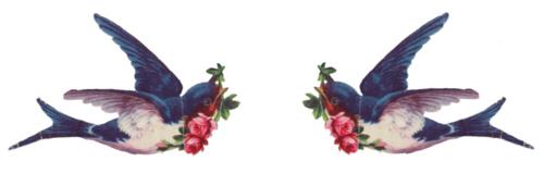 Vintage Love Birds PNG - 156540