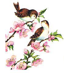 Vintage Love Birds PNG - 156539