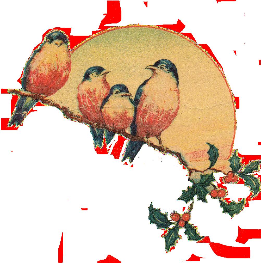 Vintage Love Birds PNG - 156537