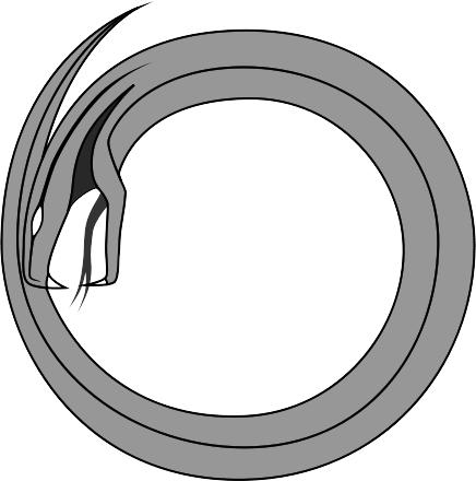 Viper Clip Art Download - Viper PNG HD