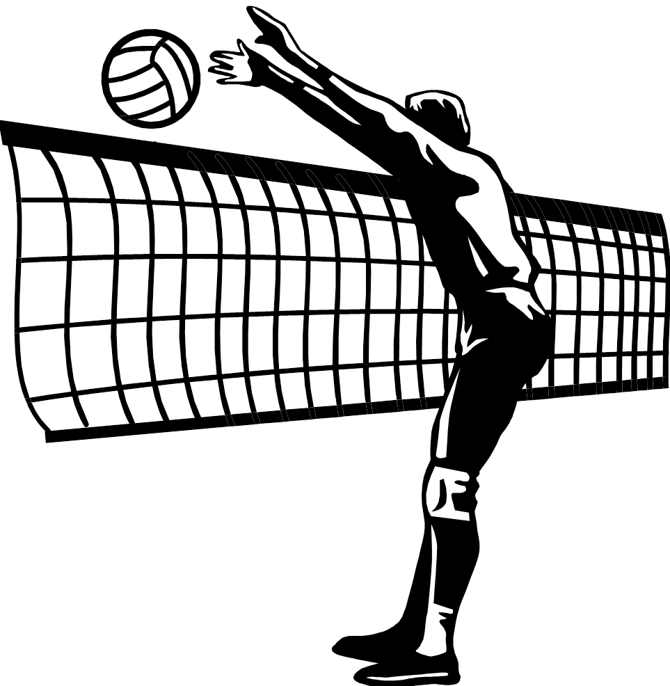 Volleyball Net PNG HD-PlusPNG