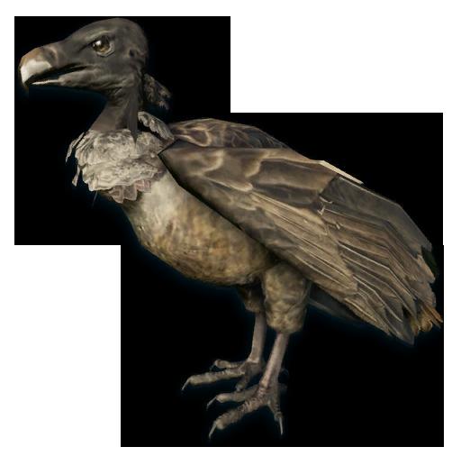 FC3 cutout vulture.png - Vulcher PNG