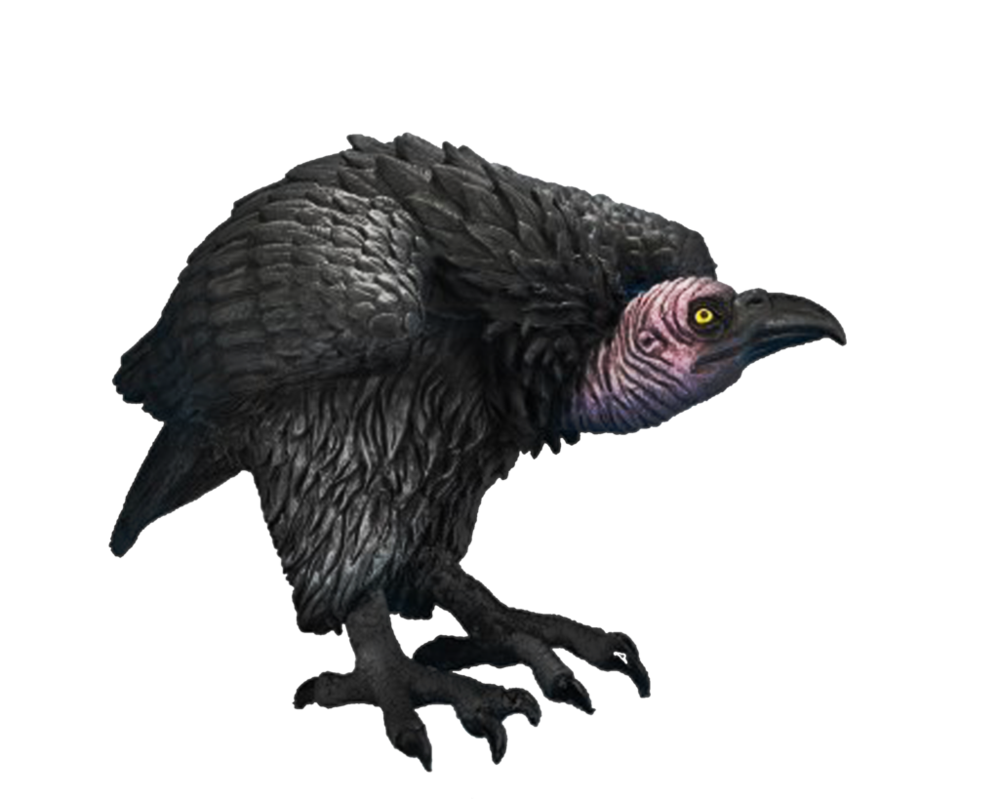 Png Vulture by Moonglowlilly PlusPng.com  - Vulcher PNG