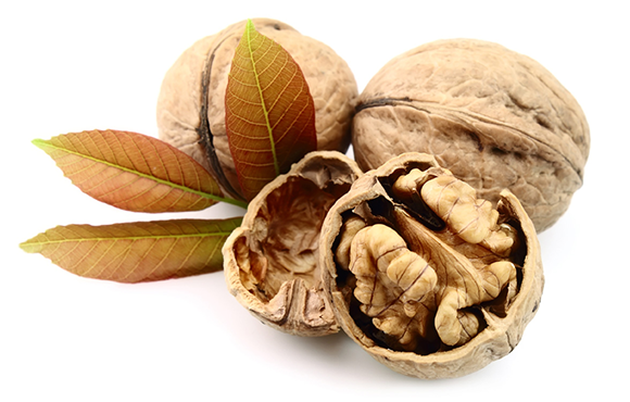 Tea made from walnut partitions for heart problems and strokes u2013 Cuisine u0026  Health - Walnut HD PNG