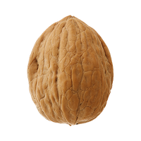 Walnut Free Download Png PNG Image - Walnut HD PNG