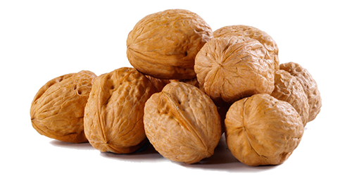 Walnut PNG - Walnut HD PNG
