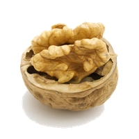 Walnut Png Hd PNG Image - Walnut HD PNG