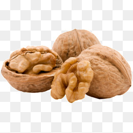 walnut, Walnut Fruit, Walnut, Walnut PNG Image - Walnut HD PNG