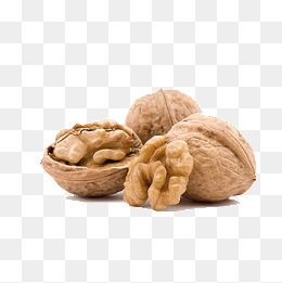 walnut - Walnut PNG