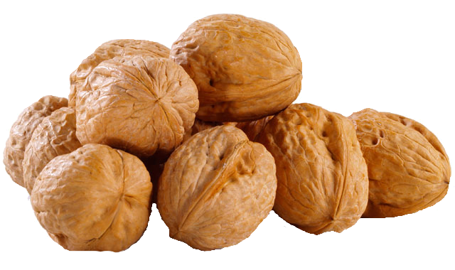 Walnut PNG - Walnut PNG