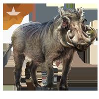 File:Huge item warthog bronze 01.png - Warthog PNG HD