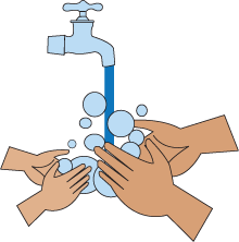 hand-washing.png - PNG Hand Washing - Wash Hands PNG HD