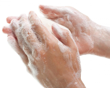 Hand Washing Techniques - PNG Hand Washing - Wash Hands PNG HD