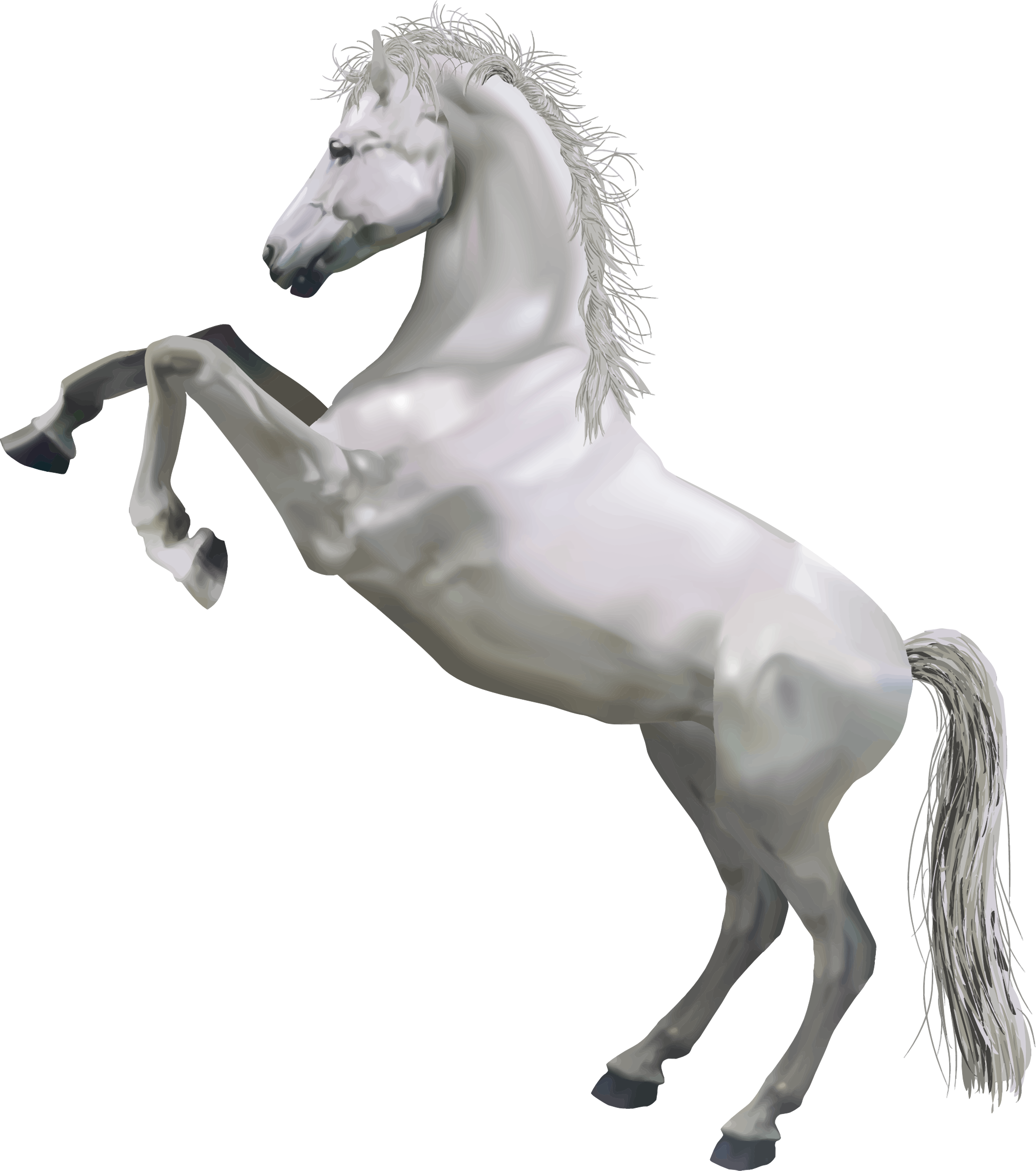 Horse Transparent PNG Sticker - Water Horse PNG