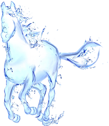 Image 4 - Water Horse PNG