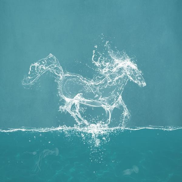The water horse - Illustrations by Paula Belle Flores u003c3 u003c3 PlusPng.com  - Water Horse PNG