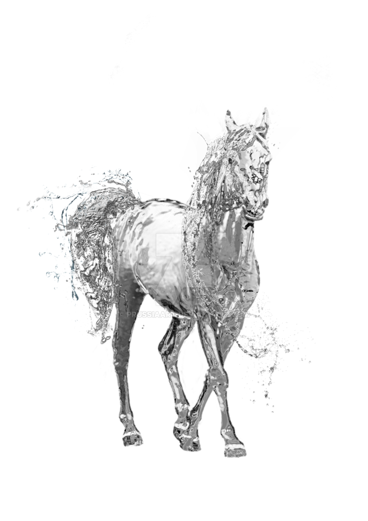 Water Horse on a transparent background. by PRUSSIAART PlusPng.com  - Water Horse PNG