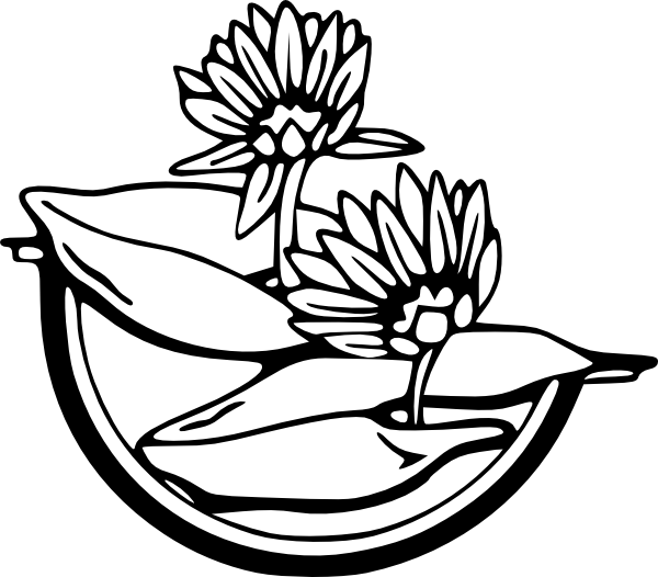 PNG: small · medium · large - Water Lily PNG Black And White