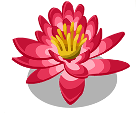 Water lily.png - Water Lily PNG