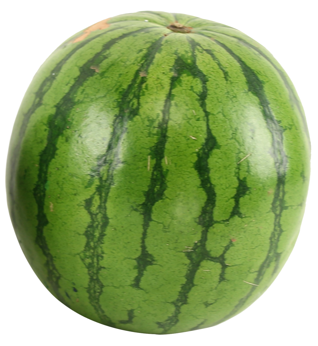 Watermelon PNG-PlusPNG.com-1072 - Watermelon PNG