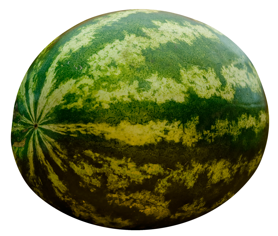 Watermelon PNG-PlusPNG.com-1162 - Watermelon PNG