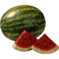 Watermelon PNG - 19181